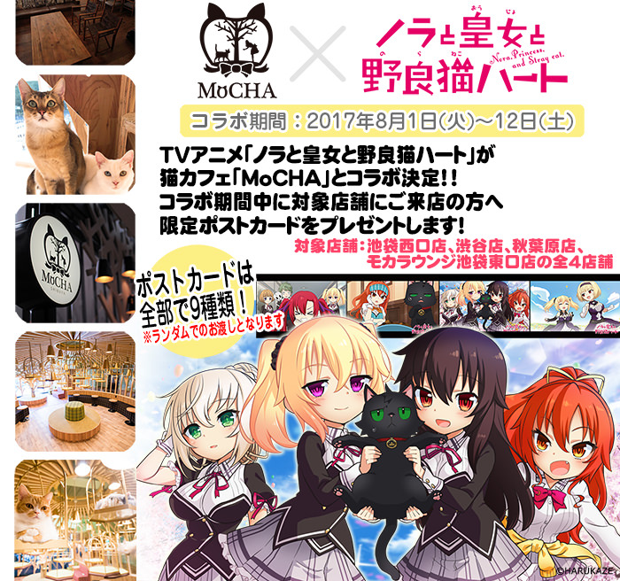 TVアニメ「ノラと皇女と野良猫ハート」が猫カフェ「MoCHA」とコラボ決定!! コラボ期間中に対象店舗にご来店の方へ限定ポストカードをプレゼントします!