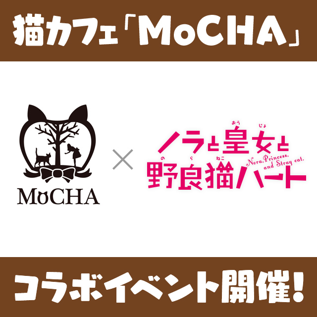 猫カフェ「MoCHA」と「ノラとと」がコラボ決定!! 期間中に対象店舗へご来店の方に限定ポストカードをプレゼント!